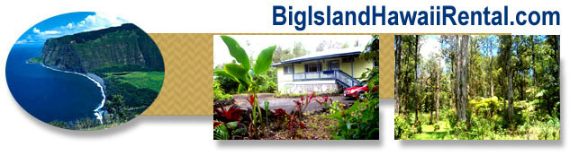 Big Island Vacatin Rental in the Puna Area