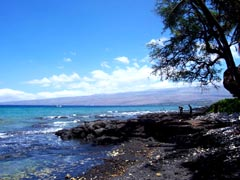 Da Big Island Coastal Pictures